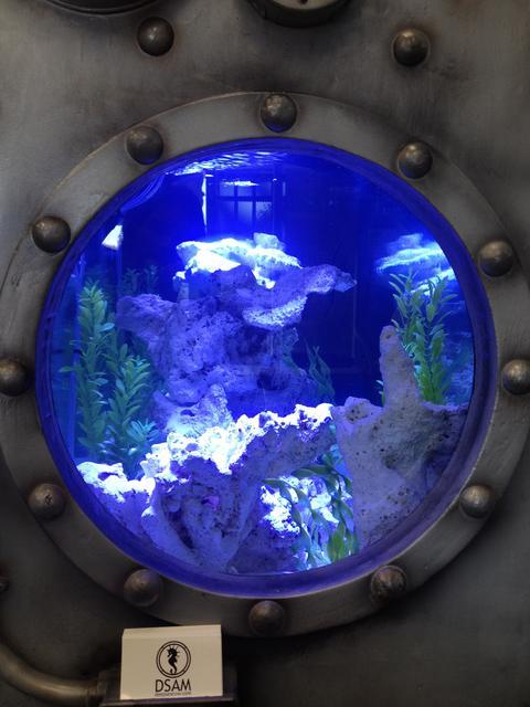 oesassignmentgue web fc2 com aquarium maintenance business plan